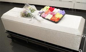 安心の直葬プラン