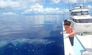沖縄の綺麗な海で海洋散骨