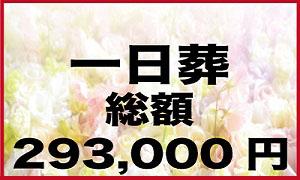 一日葬総額29.3万円